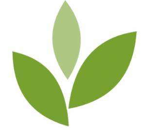BIN Logo on white