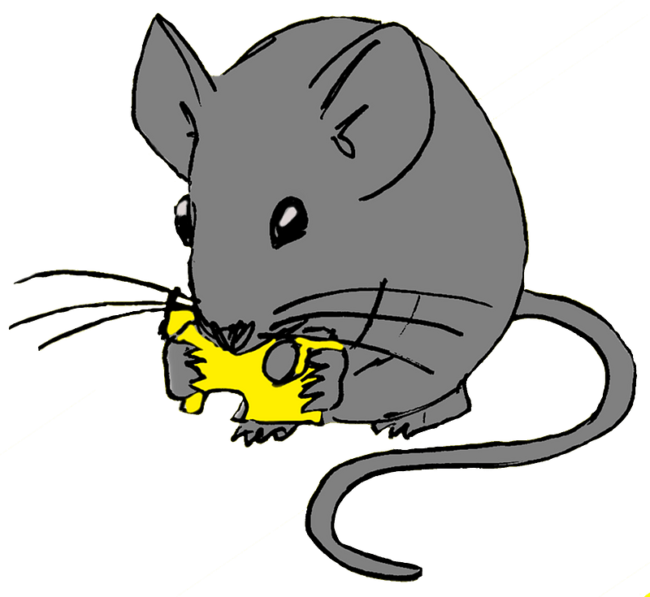 Mouse eating his cheese